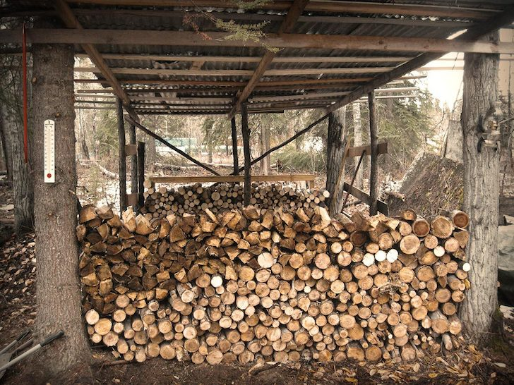 Cud has plenty of wood in his woodshed