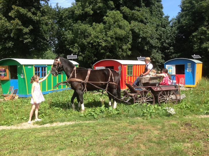 Horse drawn carriage at Baby Moon
