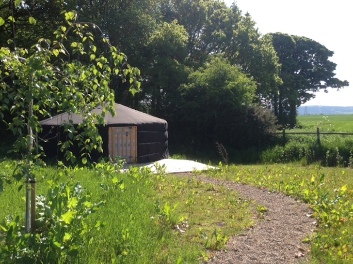 One of the yurts at Baby Moon