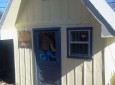 A Grandmother Turned This Shed Into A Tiny Home For Her Daughter And Grandkids