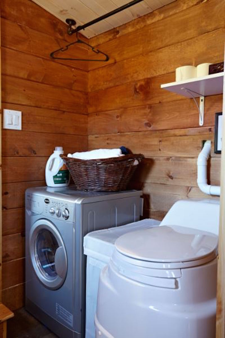 Washing machine and toilet